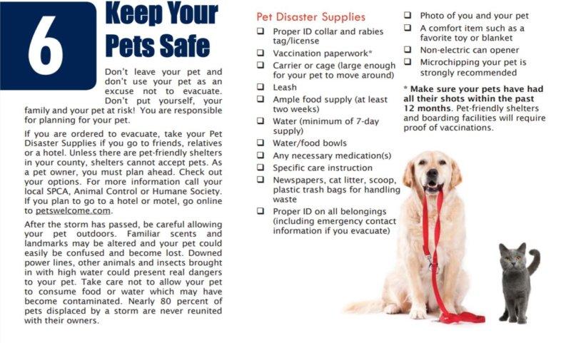 Disaster Preparedness - 6 Care for Animals